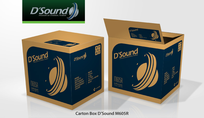 Carton Box D'Sound M605R